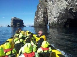 Boat tours Vestmannaeyjar Ribsafari Vestmannaeyjar around heimaey Westman Islands Vestmannaeyjar