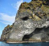 Boat tours elephant rock Vestmannaeyjar Boat tour