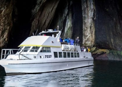 Circle Boat Tour Vestmannaeyjar - Westman Islands