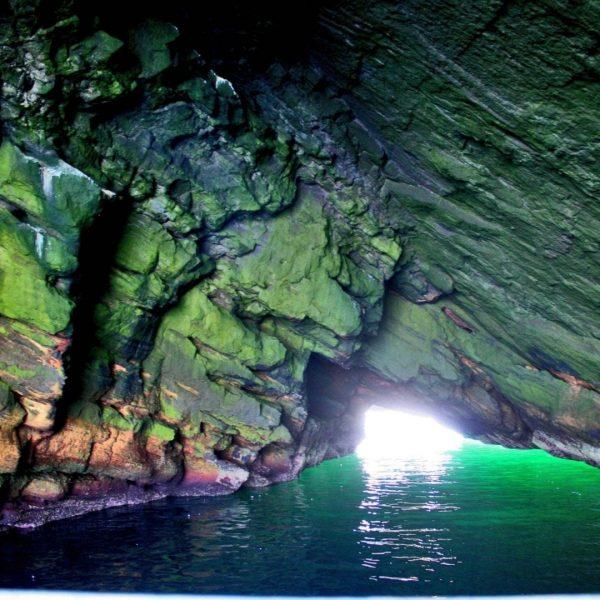 cave boat tours vestmannaeyjar