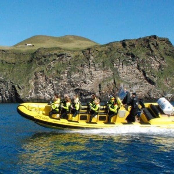 Boat Tours Vestmannaeyjar Ribsafari