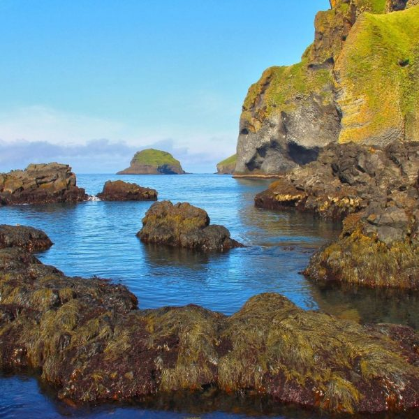 Elephant rock in sea vestmannaeyjar